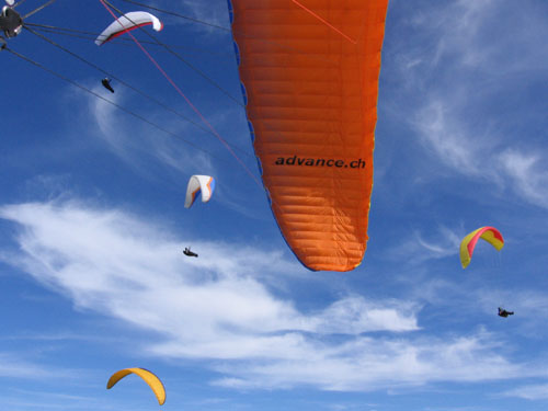 Advance Paragliders Omega 7